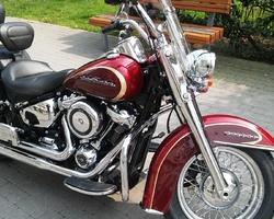 American Fever - Spécialiste Harley Davidson - Préparation CustomAmerican Fever - Spécialiste Harley Davidson - Préparation Custom